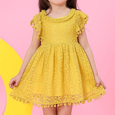 Lace Hollow Sleeve Party Dress For 1-9Y