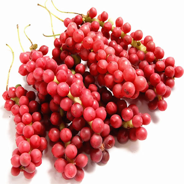 Image result for schisandra seed and fruit
