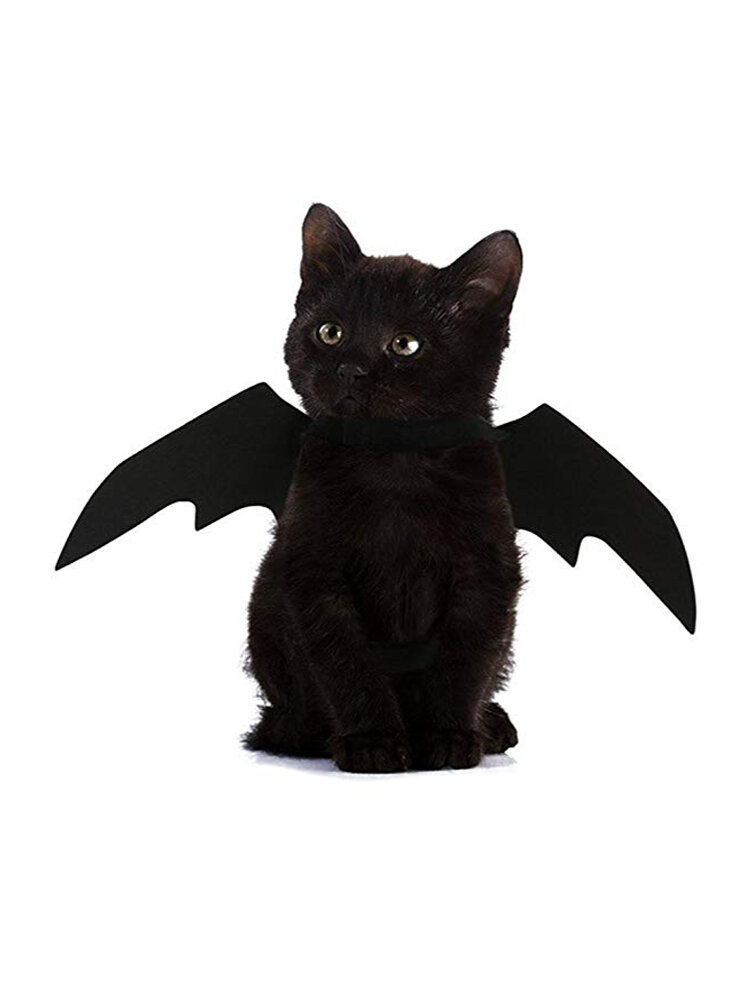 Halloween Pet Dog Katze Fledermausflügel Kostüm Black Pet Puppy Kitty Kleidung