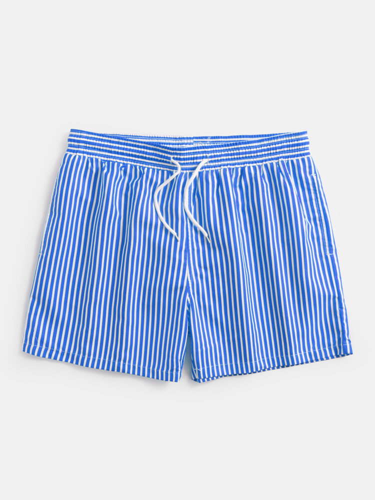 Mens Holiday Pinstripe Swim Trunks With Mesh Briefs Liner