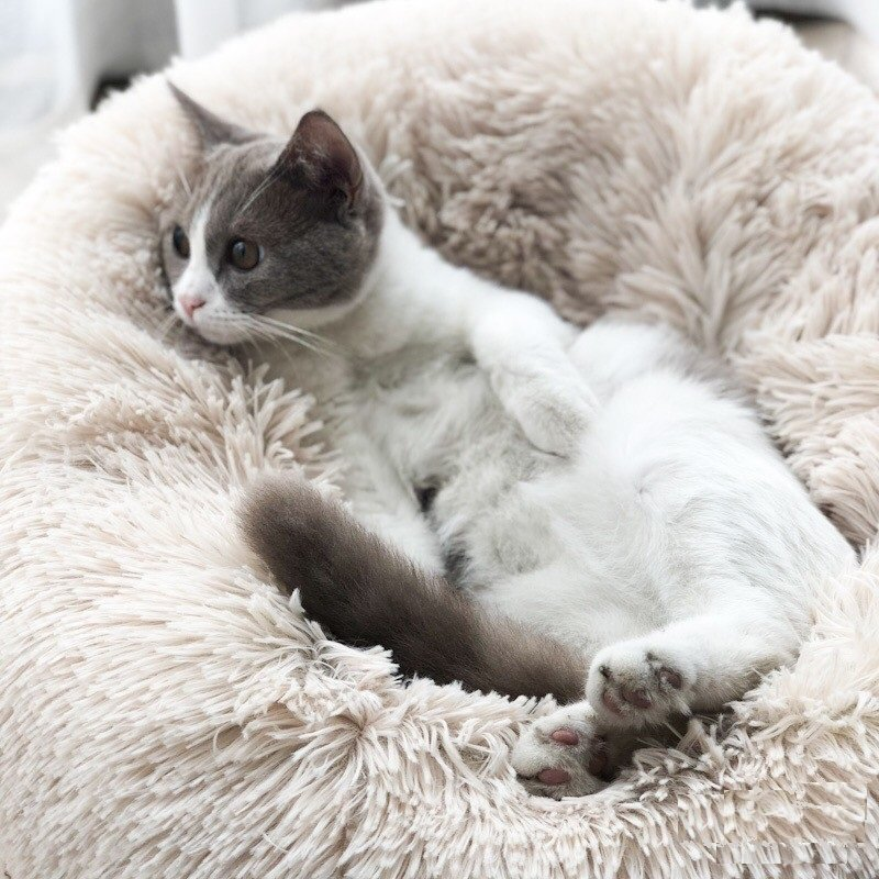 Winter Pet Bed Warm Dog Cat bed Long Plush Super Soft Pet Round Bed Kennel Dog Cat Comfortable Sleeping Cushion