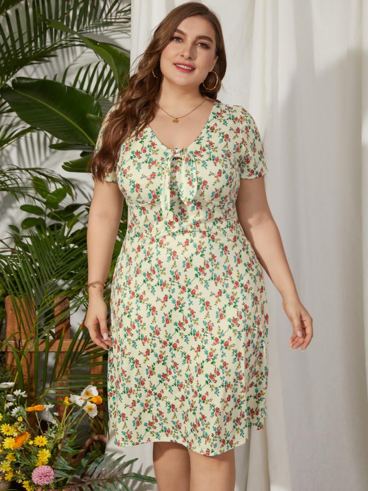 Blumendruck Kurzarm mit V-Ausschnitt und Blumendruck Plus Größe Kleid