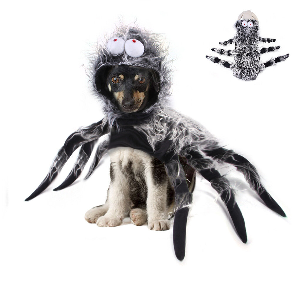 Pet Halloween Funny Big Spider Chest Back Creative Cat Dog Large Dog Transformation Costume