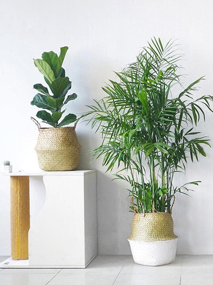 Seagrass Belly Storage Baskets Shopping Bag Box Organizer Plant Pot