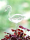 Glass Watering Cans Creative Shapes Garden Plants Houseplant Automatic Self Watering Device Glass Watering For Garden Tools - Swan