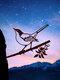 23-Types Metal Garden Tree Insert Decor Hummingbird Owl Simulation Animal Art Ornament - #16