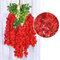 12 قطعة / المجموعة 100 سنتيمتر الزهور الاصطناعية الحرير الوستارية وهمية حديقة معلقة زهرة النبات كرمة ديكور الزفاف - أحمر