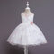 Girl's Embroidered Flower Tulle Princess Wedding Birthday Dress For 4-12Y - Pink