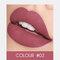 2 In 1 matten Lippenstift Lipgloss Double-Headed Design Wasserdicht Soft Smooth Cosmetic Lip Makeup - #02