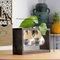 Creative Simple Style Glass Wood Plant Vase Home Decorative Planter