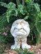 1 pieza divertida expresión Muggly's The Face estatua jardinera jardín hilo escultura decoración flor planta maceta - #02