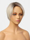 8 Inch Brown Gradient Gray-White Short Straight Hair Hand-Woven Partial Lace Wig - 01