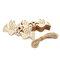 10pcs Natural Wooden Heart Laser Cut Shapes Craft Embellishments Wedding Favors - #1