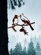 23-Types Metal Garden Tree Insert Decor Hummingbird Owl Simulation Animal Art Ornament - #07