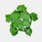装飾的な花と花輪人工のアイビーリーフガーランド植物つる偽の紅葉花家の装飾 - 2