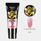 12 Constellation Nail Art Quick Dry Gel LED Clear UV Gel Multicolor Nail Gel Phototherapy Gel - 10
