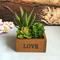AMORE Pannello di legno di bacino di legno Succulente piante di fiori Bonsai del giardino di vaso di fiori