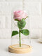 Creative Glass Cover Rose Flower Decoration Gift Eternal Flower Mother's Day Gift - Pink