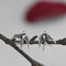 Vintage 925 Sterling Silver Earring Metal Carved Swallow Ear Stud Women Jewelry Gift - Silver