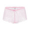 Plus Size See Through Lace Sexy Hollow Mid Waisted Panties - Pink