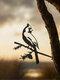 23-Types Metal Garden Tree Insert Decor Hummingbird Owl Simulation Animal Art Ornament - #02