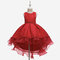 Girl's Floral Embroidered Patchwork Gauze Princess Casual Dress for 6-13Y - Red