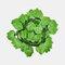 装飾的な花と花輪人工のアイビーリーフガーランド植物つる偽の紅葉花家の装飾 - 4