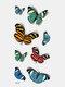 40 piezas 3D estéreo Impermeable tatuajes pegatinas escorpión flor transferencia de agua tatuaje pegatinas - 22