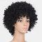 Афро черный Женское Короткие курчавые Волосы пушистые парики из высокотемпературного волокна с взрывной головкой - Черный