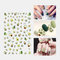 3D Colorful Nail Sticker Fruit Rainbow Series Simple Lovely Decoration Manicure Sticker - 1