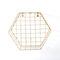 Iron Grid Wall Shelf Geometric Hexagon Wall Decoration