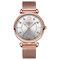 Elegant Design Mesh Steel Women Wristwatch Crystal Ladies Quartz Watch - 04
