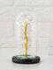Cadeau de fête des mères coloré or Rose fleur couverture en verre cadeau de décoration de fleur éternelle lumineuse - #01