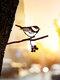 23-Types Metal Garden Tree Insert Decor Hummingbird Owl Simulation Animal Art Ornament - #12
