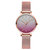 Classic Gradient Pearlescent Color Quartz Watches Waterproof Stainless Steel Strap Waist Watch