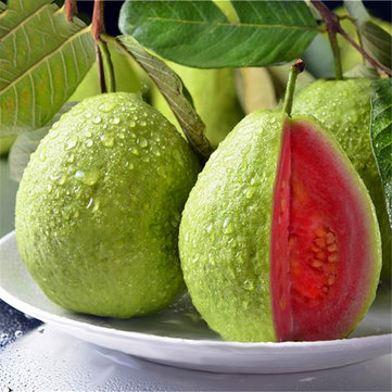 Egrow 30 Pcs/Pack Guava Seeds
