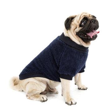 الملابس الدافئة الحيوانات الأليفة المخملية بلون عالية الياقة سترة