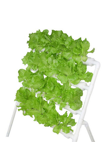 36-Holes-4-Layers-Horizontal-Hydroponic-Grow-Kit- Grow Box
