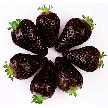 Egrow 200 PCS Black Strawberry Seeds