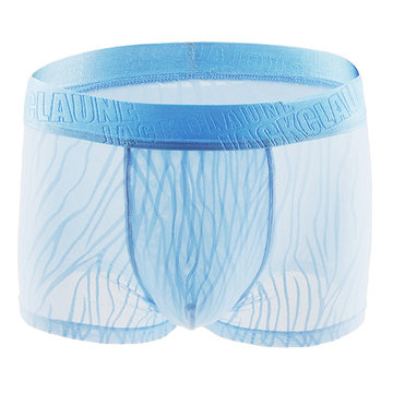 Hollow Lace Transparent Boxer Briefs