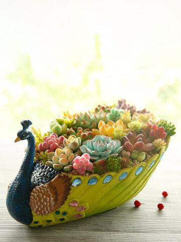 Peacock Green Plants Pot