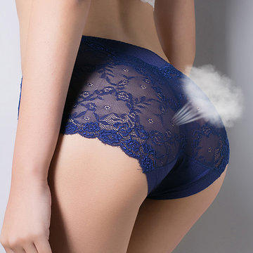 Silky Lace Sexy Breathable Comfy Panties