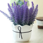 200Pcs Provence Lavender Seeds Fragrant Organic Flower Seeds Home Garden Bonsai Plant