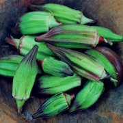 Egrow 20PCS/Pack Okra Seeds Organic Non GMO Okra Vegetable Flores For Home Garden Potted Plants