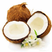 Egrow 10Pcs/Bag Coconut Tree Seeds Perennial Bonsai Juicy Fruit Plants for Home and Garden Planting