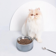 FURRYTAIL Food Grade Antibacterial Stainless Steel Cat Food Bowl Detachable Pet Bowl