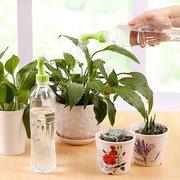 زجاجة المياه فوهة رش رئيس بونساي أدوات سقي النباتات عصاري الرش