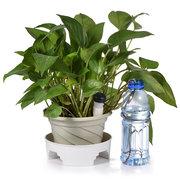 بوعاء النباتات سقي جهاز السفر عطلة منتجع الأساسية التلقائي سقي جفاف بالتنقيط
