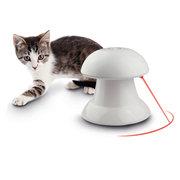 Lustige Pet Spielzeug zu Teasen Katzen Hunde Rot Laser Spielzeug Katze Hund Spielen Spielzeug