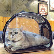 Transparente Cat Bag Carrier Puppy Backpack Portable Cat Carrier Bag Chihuahua Totoro Chinchilla